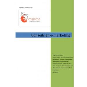 Conseils en e-marketing
